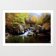 Bridge Over Water & Stone Art Print