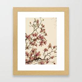 Spring in Paris Framed Art Print