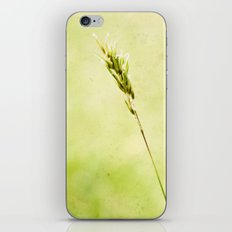 Between Nothing iPhone & iPod Skin