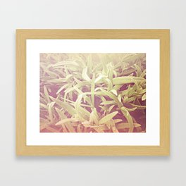 furry grass Framed Art Print