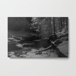 Winterhaven Metal Print