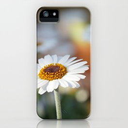 Daisys | marguerite iPhone Case