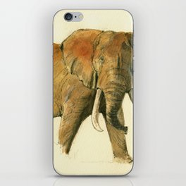 African elephant iPhone Skin