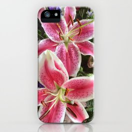 Sweet smelling pink Lillys iPhone Case