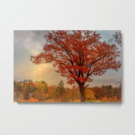 Red oak over reservoir Metal Print