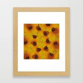 Bee flower Framed Art Print