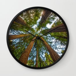 Redwood Forest Canopy Wall Clock