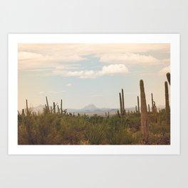 Down Desert Roads, II Art Print