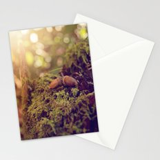 ACORNS Stationery Cards
