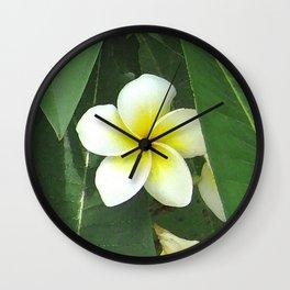 Plumeria Extreme Wall Clock