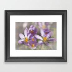 Springtime Dreams Framed Art Print