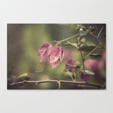 Spring in the city Canvas Print