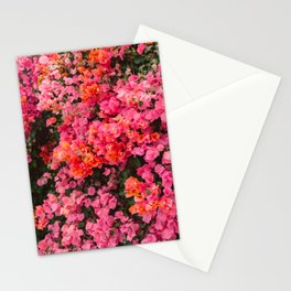 California Blooms Stationery Cards