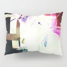 2909 Pillow Sham