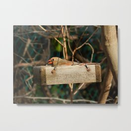 One seed mouthful Metal Print