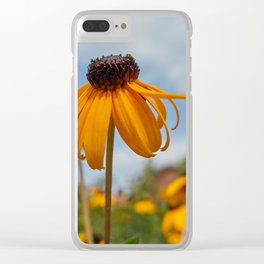 yellow rudbeckia flower in the garden Clear iPhone Case