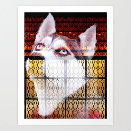 Husky Gate Art Print