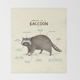 Anatomy of a Raccoon Throw Blanket