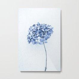 Hydrangea Blue 2 Metal Print