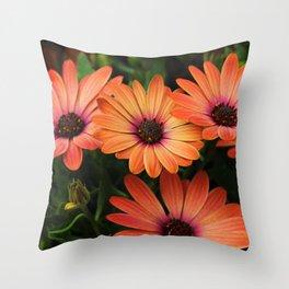 Sunset Daisy Throw Pillow