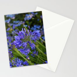 A Simple Blue Stationery Cards