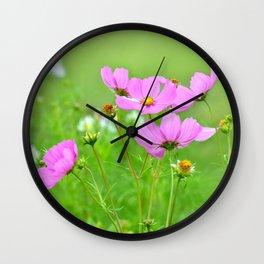 Summer meadow cosmea 033 Wall Clock