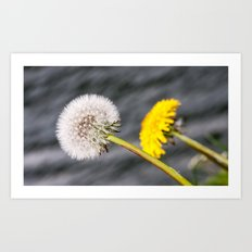 Before and after Art Print