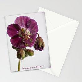 Geranium phaeum sambobor Stationery Cards