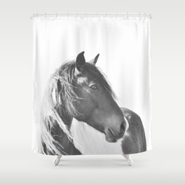 Stallion in black and white Shower Curtain