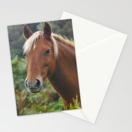 Wild Palomino Flaxen-maned New Forest Horse Stationery Cards