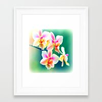 orchid Framed Art Prints featuring orchid by haroulita