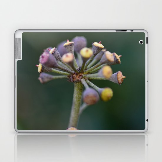 Wild Ivy Laptop & iPad Skin