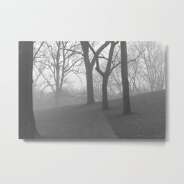 Mist of Winter Metal Print