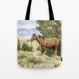 Stallion Relaxing on So Steens Mountain Tote Bag