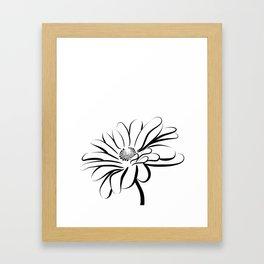 Gerbera Daisy Black & White Print 2 Framed Art Print