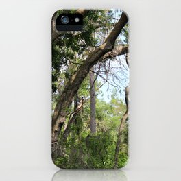 Hiking in Florida iPhone Case