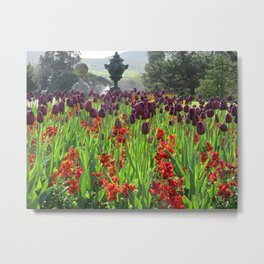 Powerscourt Tulips Metal Print