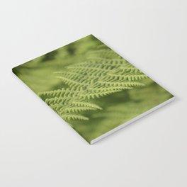 Jane's Garden - Fern Fronds Notebook
