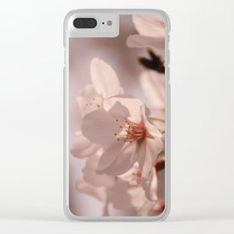 SAKURA : cherry blossoms Clear iPhone Case