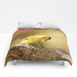 Golden Summer Comforters