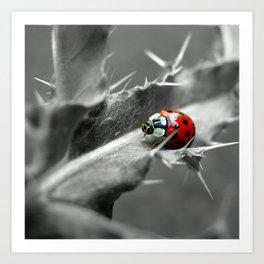 ladybug I Art Print