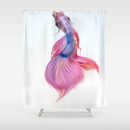 CLOSE UP - SIAMESE - FIGHTING FISH Shower Curtain