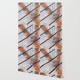 It's Raining! Beautiful Abstract Photography of Rain Falling on Redwood Deck Wallpaper