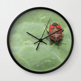red bug on a leaf Wall Clock
