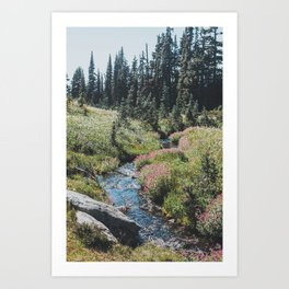Garibaldi Provincial Park Art Print