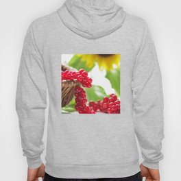Red summer fruits image Hoody