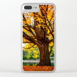 Many colors of fall Clear iPhone Case