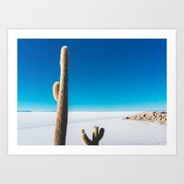 Cactus on Isla Incahuasi, Salt Flats, Bolivia Art Print