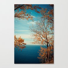 The View From the Top Canvas Print