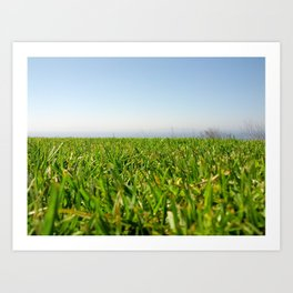 Grassy Cliffside Art Print